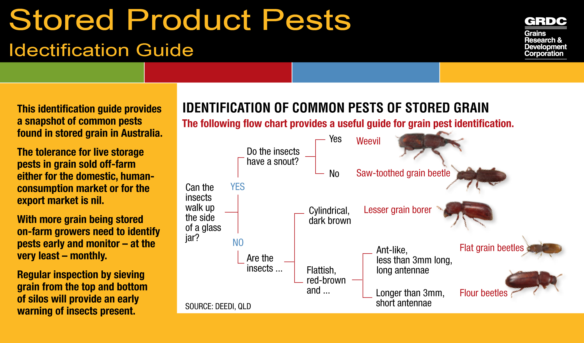 stored product pests